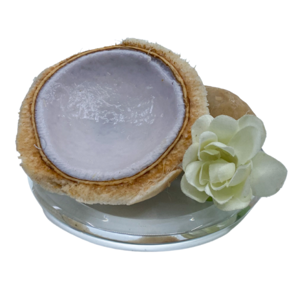 Coconut Dream Plate